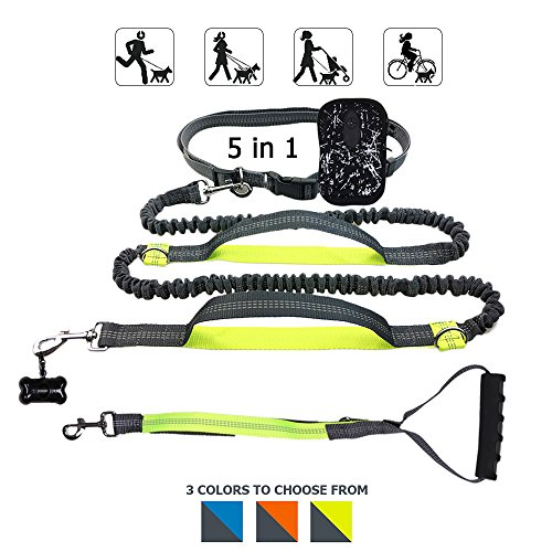 Gearlifee Hands Free Dog Leash, 5 in 1 Retractable Dual Bungees DIY Reflective Dog Leads with Waist Bag,Triangle Traction Belt,Dog Waste Dispenser for Running Walking Hiking Training (Green)