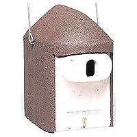 Schwegler 2181 Nisthöhle, Einflugloch oval mit Katzen- und Maderschutz, zum Aufhängen