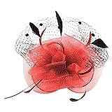 Ztl Women Wedding Fascinator Headband Feather Kentucky Derby Hat