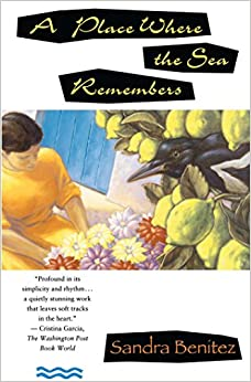 A Place Where the Sea Remembers: A Novel (Scribner's Fiction)