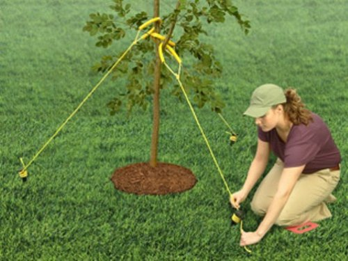 Jobe's TreeStaKit Heavy Duty Tree Staking Kit for Large Trees Up To 6 inches in Diameter (Kit Includes: Highly Visible Straps, 36 feet of Nylon Rope, and Durable Stakes)
