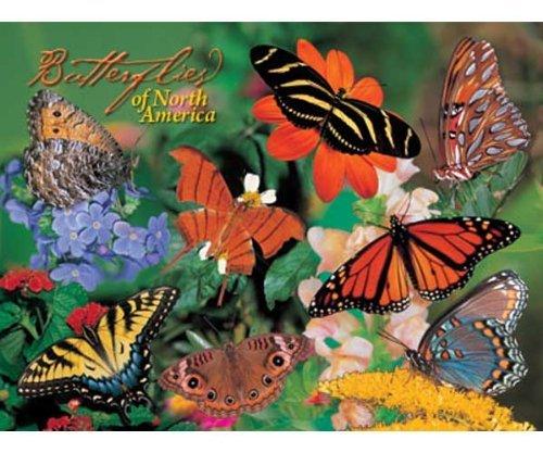 Impact Photographics IMP5282184S Puzzle Butterflies by Impact Photographics ()