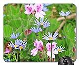 Mouse Pad - Blue Daisy Australian Daisy Daisy Flowers Plant