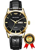 BRIGADA Swiss Watches for Men, Classic Gold Business - Best Reviews Guide