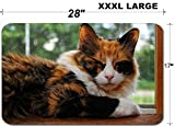 Luxlady Large Table Mat Non-Slip Natural Rubber Desk Pads IMAGE ID 30927578 Sleepy Kitty on a Sunny Window Sill