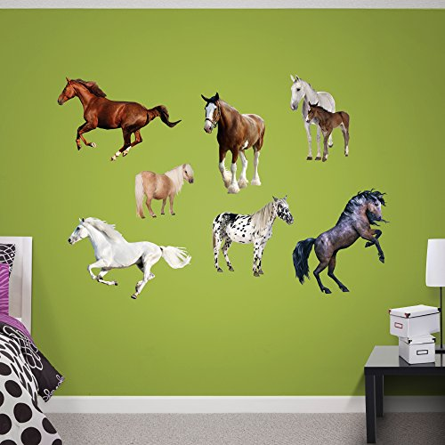 FATHEAD Horse Collection Real (Foal Horse Heads)