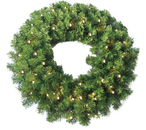 ine Wreath 250 tips and 50 Concave Soft White LED lights w/ Battery Operated-Timer ()