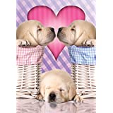 Buffalo Games Adorable Animals: Puppy Love Jigsaw Puzzle (300 Large Piece)