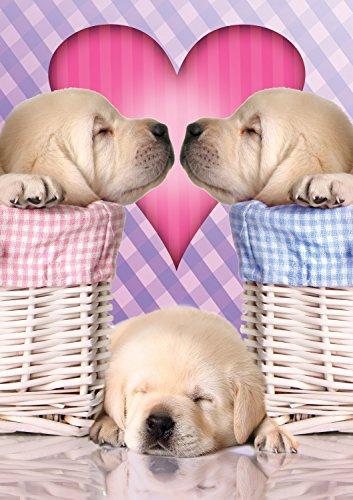 Buffalo Games Adorable Animals: Puppy Love Jigsaw Bigjigs Pu