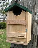 Songbird Essentials SE519 Screech Owl House (Set of 1)