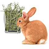 Rabbit Hay Feeder Rack - Mess-Free Food Dispenser - Guarantees Clean and Dry Hay, Alfalfa and Other Grasses - Also Ideal for Guinea Pigs, Chinchillas, Hamsters - Attaches to Any cage Conveniently