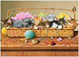 Kitty Litter 1000 Piece Puzzle