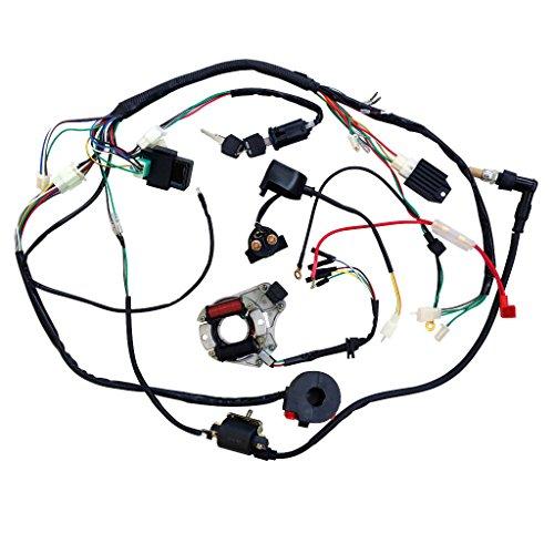 Minireen full wiring harness loom kit cdi coil magneto