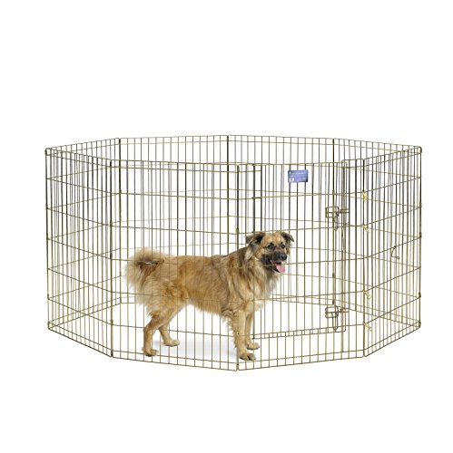 (MidWest Foldable Metal Exercise Pen / Pet Playpen, Gold zinc w/ door, 24