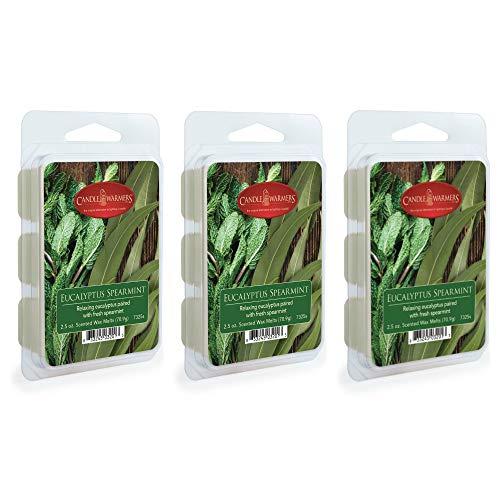CANDLE WARMERS ETC. 2.5 oz Wax Melt 3-Pack, Eucalyptus Spearmint ()