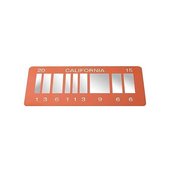 Metall Vanity Rep Nummernschild ASVP Shop Zur/ück in die Zukunft 2 Film Replica Rep aus Delorean 2015