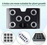 Hydroponics System Indoor Growing System with a