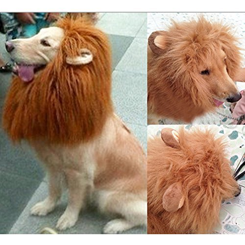 Pet Costume Dog Hairpiece Lion Wig with Ears, Christmas Halloween Party Accessories Fancy Dress (Halloween Costumes For Labradors)