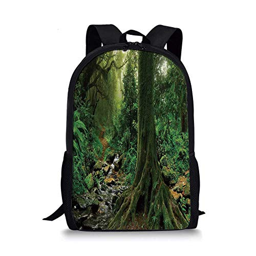 Apartment Decor Stylish School Bag,Rain Forest Scene with River in North Forest in Early Morning Humid Fog Print for Boys,11''L x 5''W x 17''H