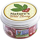 The Travel Jar   30 Servings   $1~15-20 mins   BEST WAY TO TAKE YOUR BERRIES ON THE GO