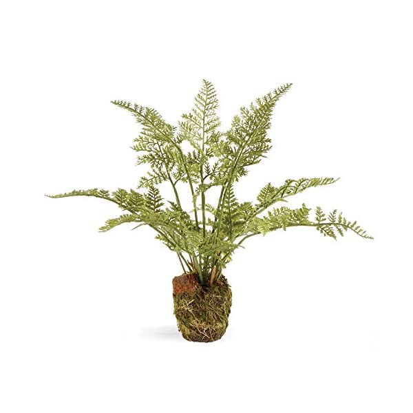 CONSERVATORY-SOFT-FERN-DROP-IN-85