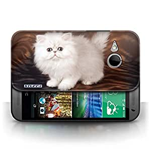 KOBALT? Protective Hard Back Phone Case / Cover for HTC One/1 Mini 2 | White & Fluffy Design | Cute Kittens Collection