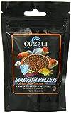 Cobalt International ACI22200 Cobalt Goldfish Pellets for Pets, 1.5-Ounce