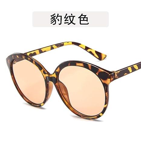 Yangjing-hl Gafas de Ciclismo Gafas de Sol Gafas de Sol con ...