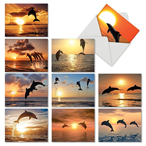 M6460OCB Sunset Dolphins: 10 Assorted Blank All-Occasion Note Cards Featuring Inspirational and Relaxing Images of Leaping Dolphins Silhouetted Against the Setting Sun, w/White (Leaping Dolphin)