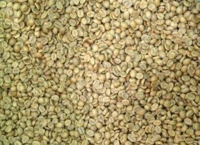 5LBS Brazil Volcano Fazenda Santa Izabel #05 Unroasted Green Coffee Beans