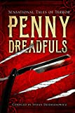 img - for Penny Dreadfuls: Sensational Tales of Terror (Fall River Classics) book / textbook / text book