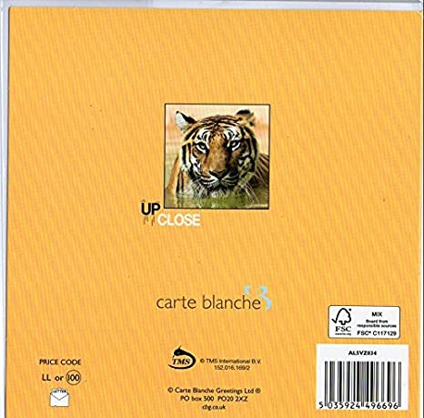Carte blanche 3d holographic card up close orangutan carte carte blanche 3d holographic card up close orangutan carte blanche greetings ltd m4hsunfo