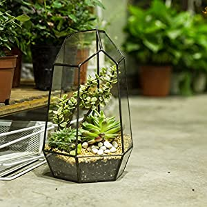 98inches Height Indoor Tabletop Irregular Glass Geometric Air Plants Terrarium Box Desktop Display Planter Succulent Holder Flower Pot For Fern Moss Diy
