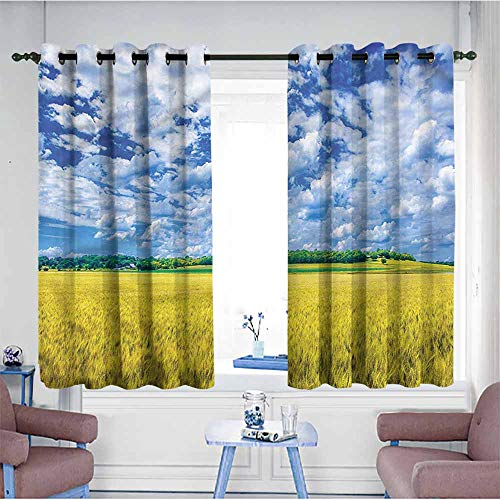 Mdxizc Bedroom Curtain United States Wheat Farm USA Kansas Printing Insulation W72 xL45 Suitable for Bedroom,Living,Room,Study, etc. (Difference Between State And Non State Actors)