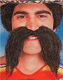 Walrus Moustache Facial Hair