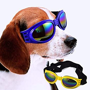 Sol De Gafas Perros Rojo Amarillo Ropa Mjd Azul Para Negro H2IDeWYE9