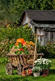 CSFOTO 4x6ft Background for Autumn Harvest Pumpkin Straw Stack Photography Backdrop Hay Bales Cart Apples Farm Countryside Thanksgiving Day Rural Scene Photo Studio Props Polyester Wallpaper