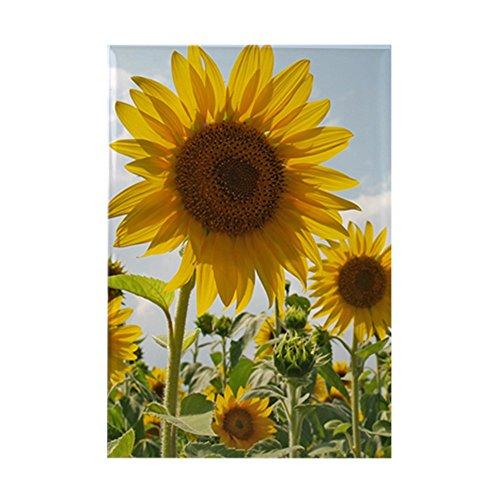 sunflower dishwasher magnet cover - 2