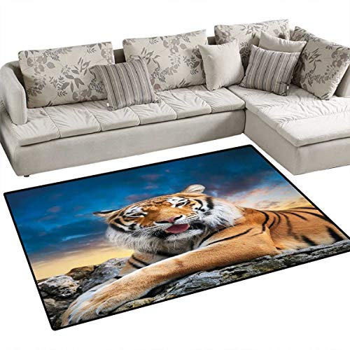 Tiger Bath Mat 3D Digital Printing Mat Calm Siberian Large Cat with Beautiful Sunset Resting on a Boulder Relaxed Beast Door Mat Increase 48