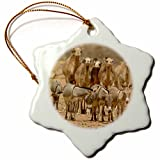 3dRose Mauritania, Adrar, Camels and donkeys going to the well-AF27 APA0041 - Aldo Pavan - Snowflake Ornament, Porcelain, 3-inch (orn_74062_1)