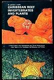 Caribbean Reef Invertebrates and Plants, Patrick I. Colin, 0876664605