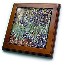 3dRose ft_46958_1 Van Gogh Irises Iris, Flower, Flowersanniversary, Wedding Anniversary, 25th Anniversary, Faith Framed Tile, 8 by 8-Inch
