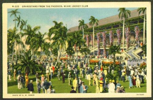 Paddock Miami Jockey Club FL postcard 1938
