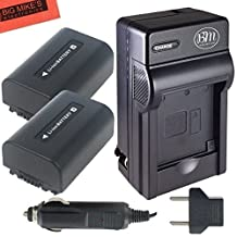 Pack of 2 NP-FV50 Batteries And Battery Charger for Sony HDR-CX220 HDR-CX230 HDR-CX290 HDR-CX380 HDR-CX430V TD30V HDR-CX260V HDR-CX580V HDR-CX760V HDR-PJ200 HDR-PJ230 HDR-PJ380 HDR-PJ430V HDR-PJ650V HDR-PV710V HDR-PV790V HDR-TD30V Handycam Camcorder + More!!