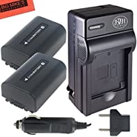 BM Premium Pack of 2 NP-FV50 Batteries and Battery Charger for Sony FDR-AX53, HDR-CX675/B, HDR-CX455/B, HDR-CX330, HDR-CX380, HDR-CX430V, HDR-CX900, TD30V, HDR-CX260V, HDR-CX580V, HDR-CX760V, HDR-PJ200, HDR-PJ230, HDR-PJ340, HDR-PJ380, HDR-PJ430V, HDR-PJ540, HDR-PJ650V, HDR-PV710V, HDR-PJ670, HDR-PV790V, HDR-PJ810, HDR-TD30V, FDR-AX33, FDR-AX100 Handycam Camcorder