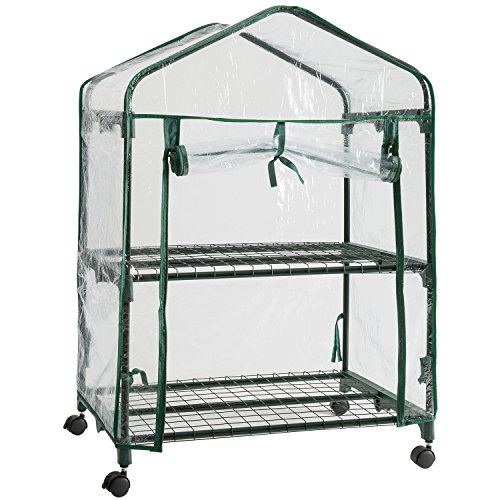 DOEWORKS 2 Tier Mini Portable Plant Greenhouse with Clear Cover, Indoor Outdoor Garden House with Casters, 26.8