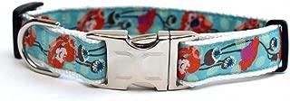 product image for Diva-Dog 'California Poppy' Custom Engraved Dog Collar