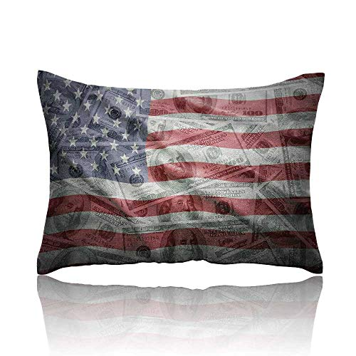 American Flag Throw Pillowcase American Dollar on Flag Money Currency Exchange Value Global Finance Idol Cold Pillowcase 13