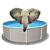 12x20 ft Rectangle Pool Liner Pad, Elephant Guard