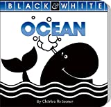 Ocean (Board Book), Charles Reasoner, 1617418846